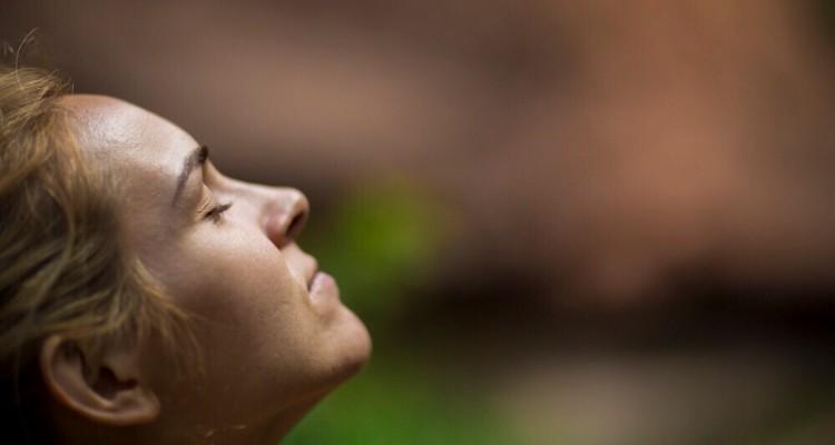 Mind-diet-dmg-supports-brain-health