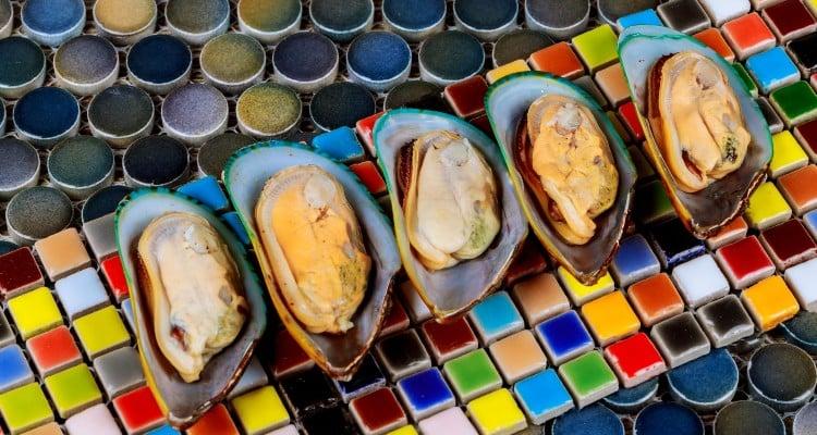 dmg, perna, mussels